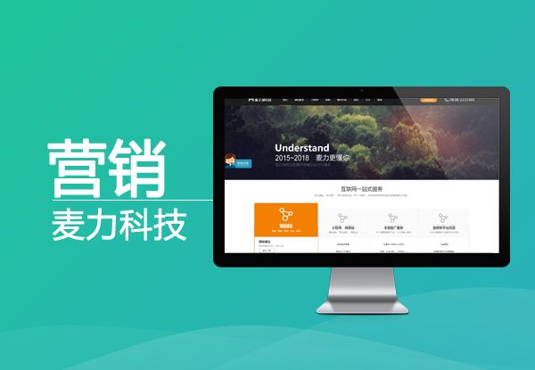 营销型网站建设解决方案